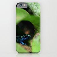 iPhone & iPod Case featuring Poison Dart Frog- Dendrobates Azureus by Kimberly Sulzer-Girlwithafrogtattoo