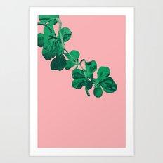 Branch Floripa Art Print