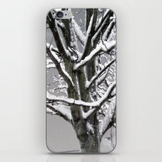 Every Tree a Sculpture iPhone & iPod Skin