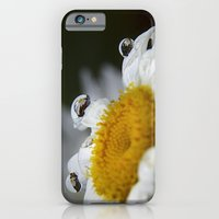 Daisy reflections iPhone 6 Slim Case