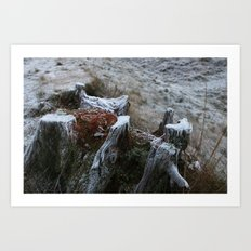 Stump & Frost Art Print