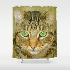 PAW-TENTIAL Shower Curtain