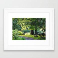 Sunshine and Shadows Framed Art Print