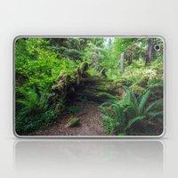Hoh Rain Forest Laptop & iPad Skin