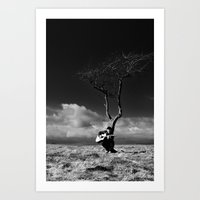 The Player 2 Art Print