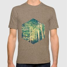 Stand of birch trees with small pathway lined in grasses running through it Mens Fitted Tee Tri-Coffee SMALL