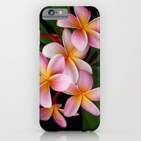 Wailua Sweet Love iPhone 6 Slim Case