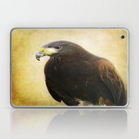 A Harris Hawk Laptop & iPad Skin