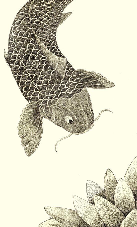 Lotus Koi Art Print