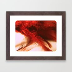 ruby feathers Framed Art Print
