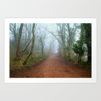 Foggy Woodland Art Print