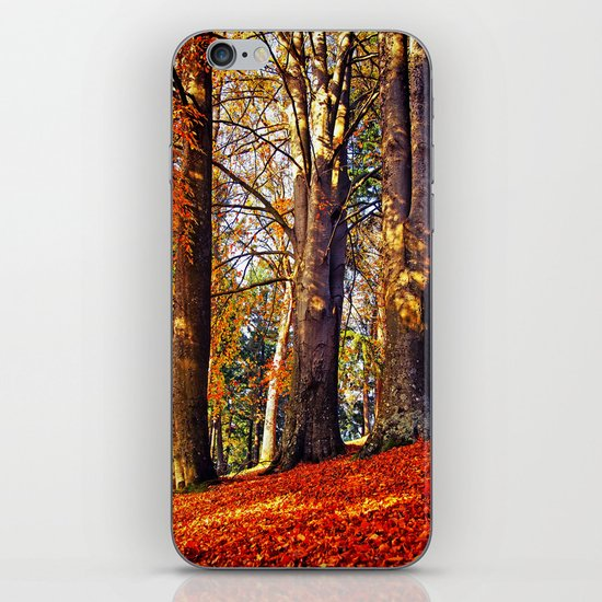 Autumn troika iPhone & iPod Skin
