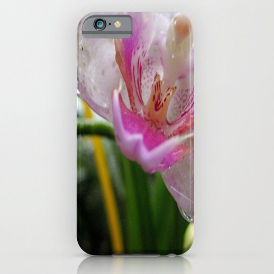 Orchid Mornings iPhone & iPod Case