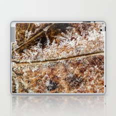 frost and a leaf Laptop & iPad Skin
