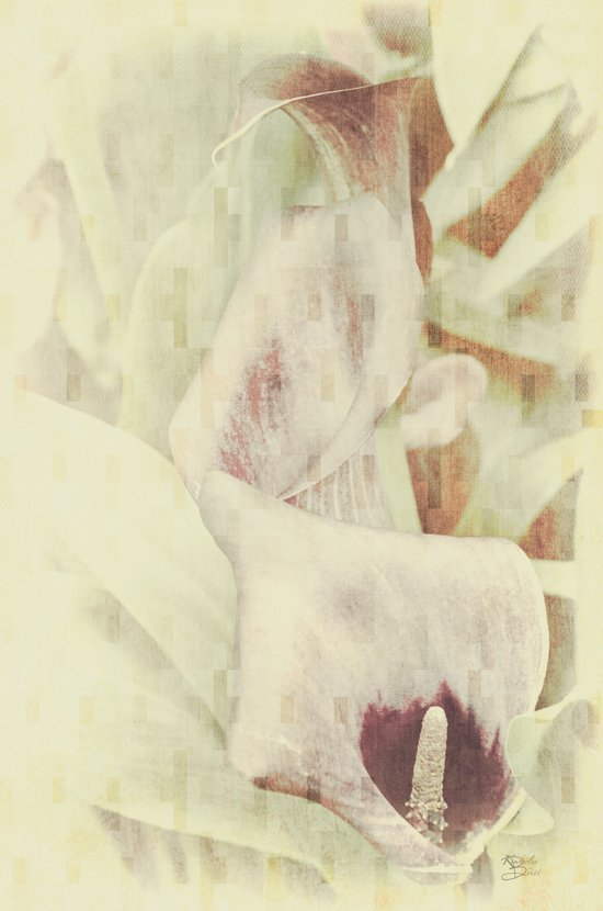 Triple Lily Abstract Art Print