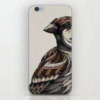 Berlin Sparrow iPhone & iPod Skin