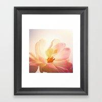 Pink Dream Framed Art Print