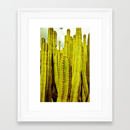 E. canariensis Framed Art Print