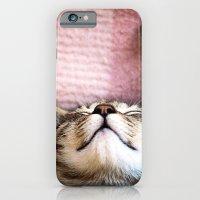 Emily, the cat iPhone 6 Slim Case