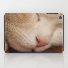 Sleeping Cat iPad Case