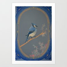 Bluejay Art Print