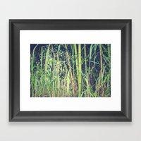 Ubiquitous Bamboo Framed Art Print