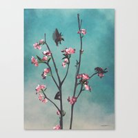 Hummingbears Canvas Print