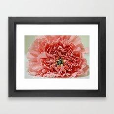 Phi Pin and Carnation Framed Art Print