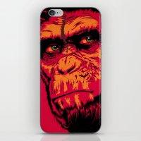 D.O.T.P.O.T.A. iPhone & iPod Skin