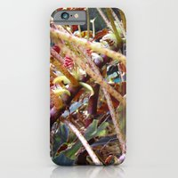 Dragon Fight    [PLANTS]   [VINES] iPhone 6 Slim Case