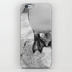 Awkward Penguin iPhone & iPod Skin