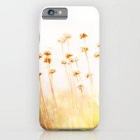 Summer Dry iPhone 6 Slim Case