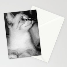 Curious Kitty Stationery Cards