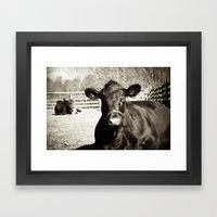 Black Cow Framed Art Print