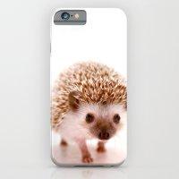 iPhone Cases featuring Hedgehog by Derek Doi