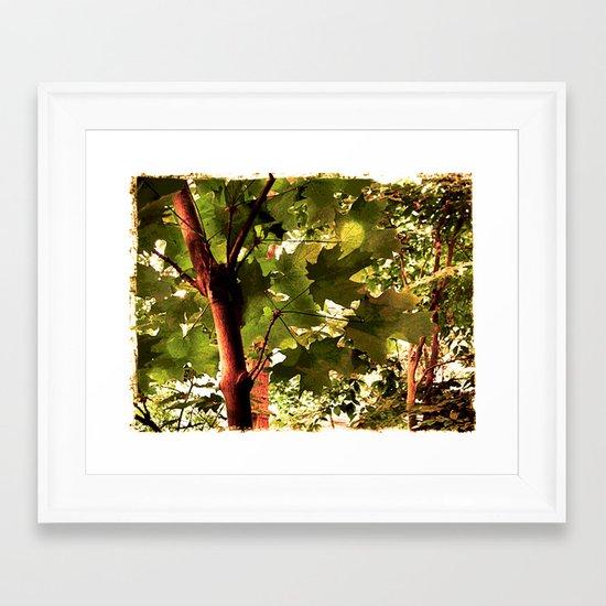 Maple Framed Art Print