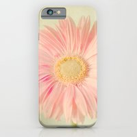 Gerbera Daisy iPhone 6 Slim Case