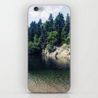 Water Hole iPhone & iPod Skin