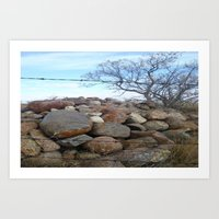Tree and Rocks Art Print