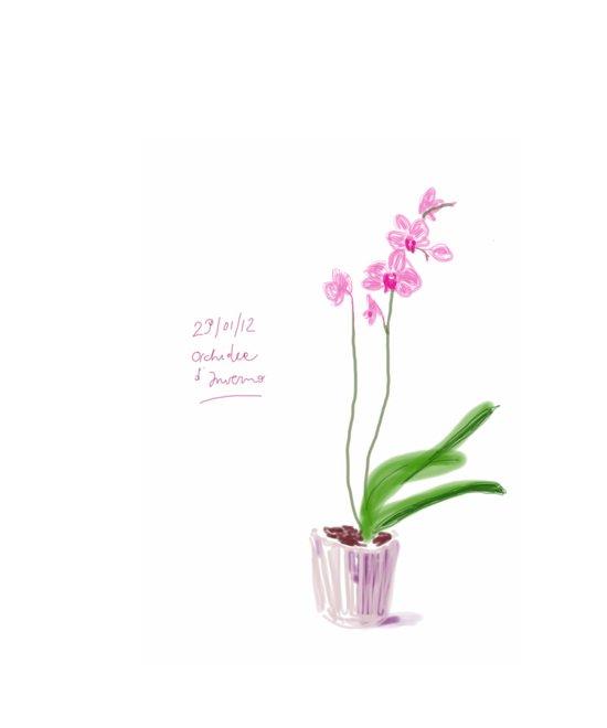 Orchidea d'Inverno Art Print
