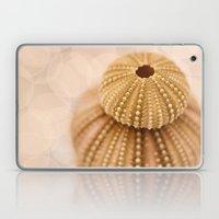 Double Urchin Laptop & iPad Skin