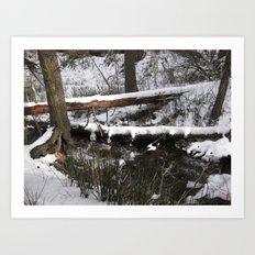 Winter's Light Art Print