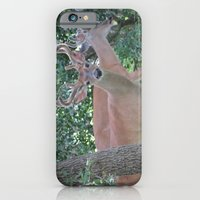 iPhone & iPod Case featuring Up Close and Personal by grandmat