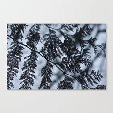 Branch Silhouette Canvas Print