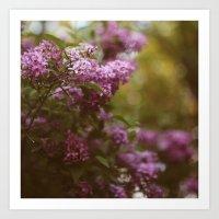 Lilac Daydream Art Print