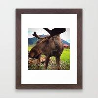 AK Moose Framed Art Print