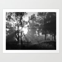 Morning Rays Art Print