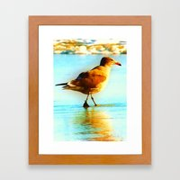 You are the Only Gull for Me! Framed Art Print