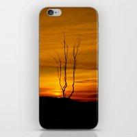 Lone tree sunset iPhone & iPod Skin