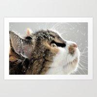 >^..^< .... In The Snow Art Print
